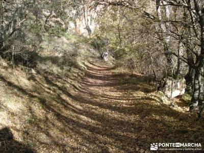 Parque Natural del Barranco Río Dulce;rutas navarra senderismo rutas senderismo murcia